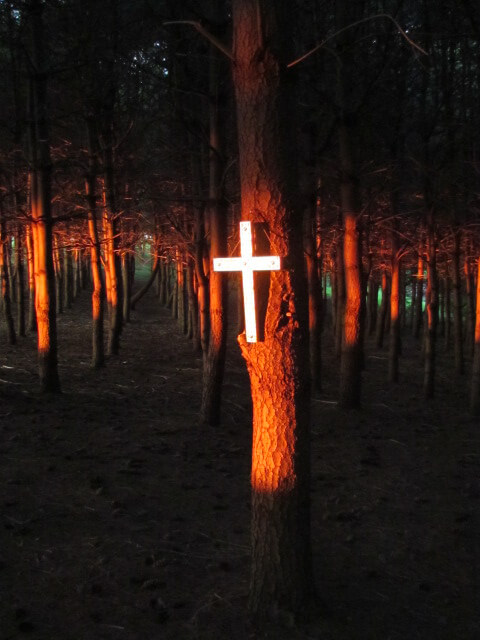 Cross.in.Trees.Close.Up